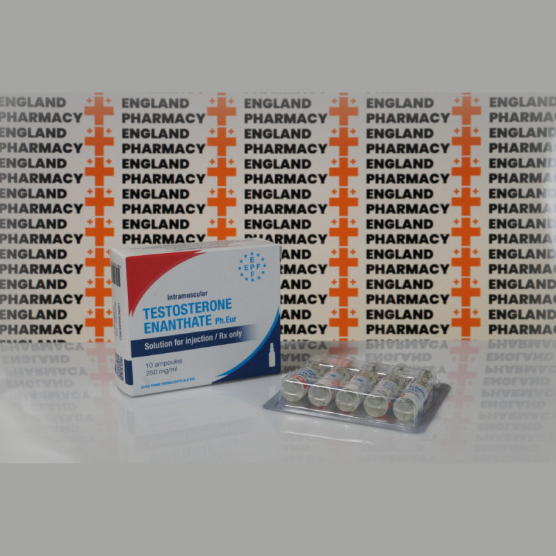 Testosterona Enanthate 250 mg Euro Prime Farmaceuticals | EPC-0268